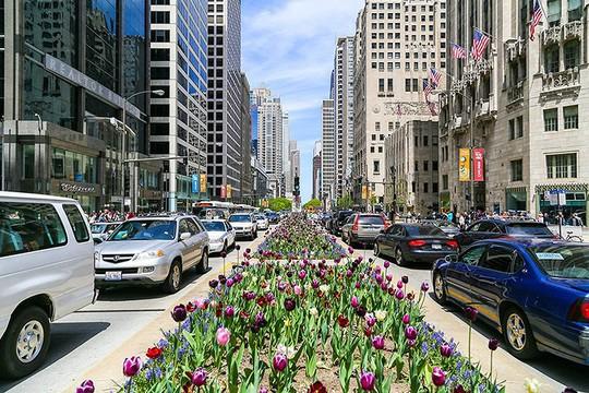 Bên trong 18 con phố nổi tiếng nhất thế giới có gì đặc biệt? - Ảnh 18.