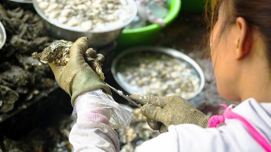 Du khách chen nhau mua hải sản tươi tại phố biển Vũng Tàu - Ảnh 4.