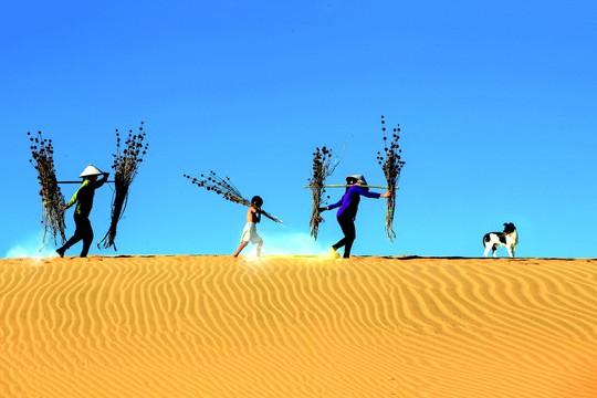 Khai tâm từ cát - Ảnh 1.