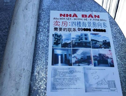 Người Trung Quốc thu gom đất ở Nha Trang