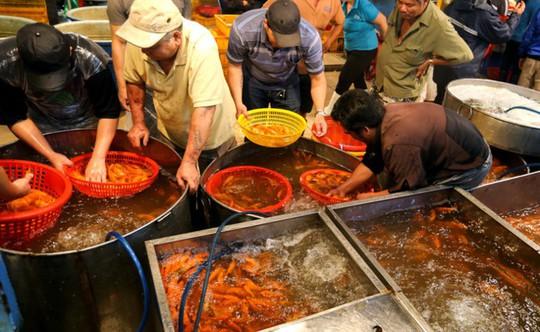 Nhộn nhịp mua cá chép lúc nửa đêm ở chợ lớn nhất Sài Gòn - Ảnh 2.