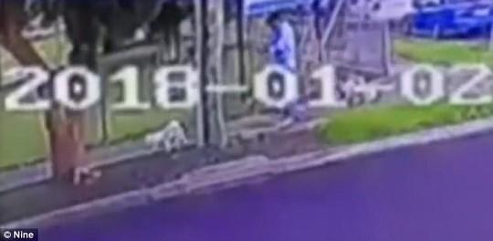 Úc: Người gốc Việt bị đồng hương đánh chết khi dắt chó đi dạo - Ảnh 1.