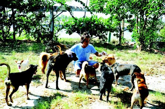 Giải cứu cún cưng - Ảnh 2.