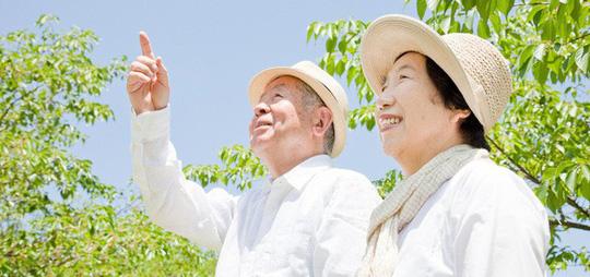 """Học ngay 6 quy tắc """"ẩm thực vàng"""" của người Nhật để sống thọ - Ảnh 1."""