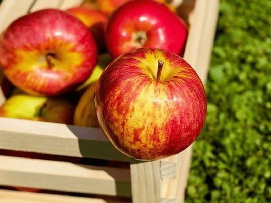 Tiêu thụ 11 thực phẩm này sai thời điểm sẽ có hại cho sức khỏe - Ảnh 6.