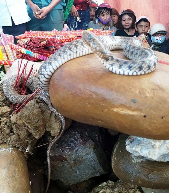 Dân ùn ùn xem mẹ con rắn thần xuất hiện trên mộ vô danh - Ảnh 1.