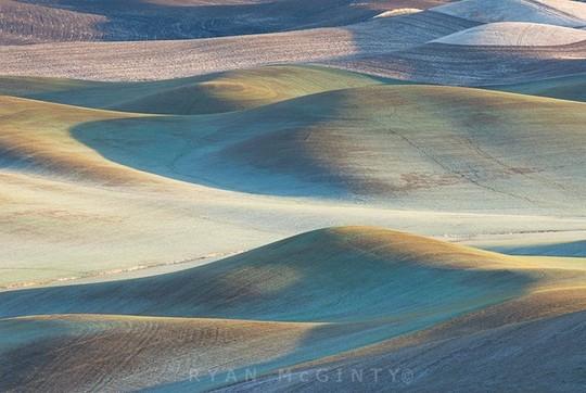 Vùng đất có những thảm cỏ đa sắc màu tuyệt đẹp - Ảnh 3.
