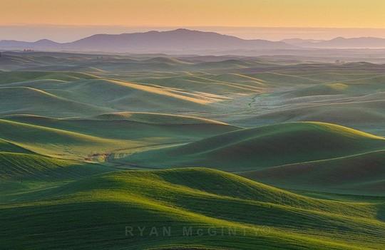 Vùng đất có những thảm cỏ đa sắc màu tuyệt đẹp - Ảnh 6.