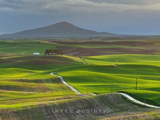 Vùng đất có những thảm cỏ đa sắc màu tuyệt đẹp - Ảnh 9.