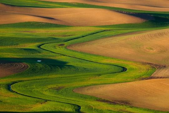 Vùng đất có những thảm cỏ đa sắc màu tuyệt đẹp - Ảnh 10.