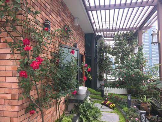 Ngắm ban công nhỏ xinh đầy hoa hồng của bà mẹ Hà Nội - Ảnh 6.