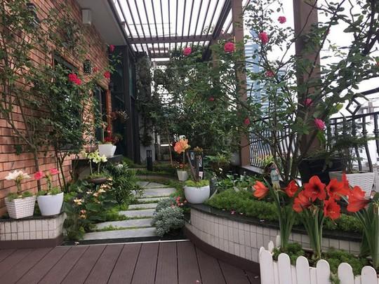 Ngắm ban công nhỏ xinh đầy hoa hồng của bà mẹ Hà Nội - Ảnh 9.
