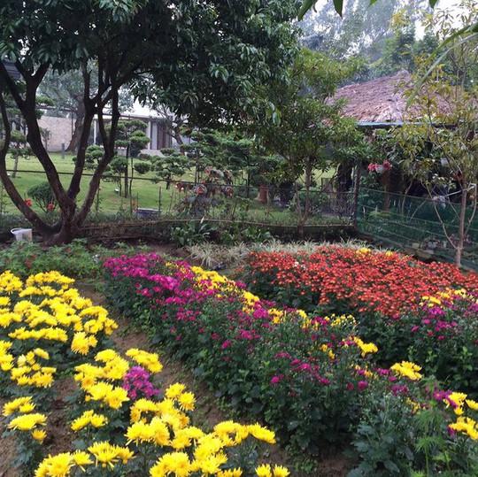 Biệt thự nhà vườn đẹp như mơ của diva Mỹ Linh - Ảnh 9.