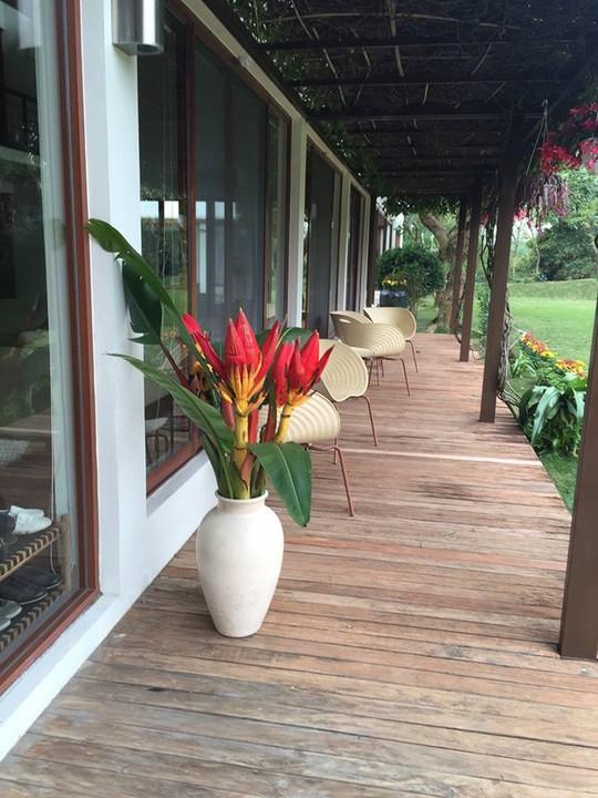 Biệt thự nhà vườn đẹp như mơ của diva Mỹ Linh - Ảnh 5.