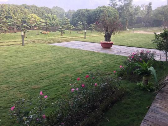 Biệt thự nhà vườn đẹp như mơ của diva Mỹ Linh - Ảnh 8.