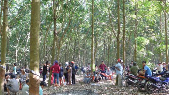 Tóm kẻ hiếp và ném bé gái xuống giếng ở Bình Phước - Ảnh 1.