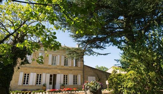 Ngắm vườn nho đắt giá của Triệu Vy trong lâu đài tại Pháp - Ảnh 2.