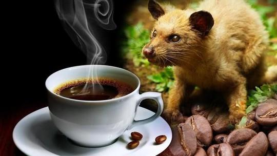 5 món cà phê độc lạ nhìn là muốn thử ngay - Ảnh 3.