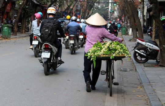 Truy tìm nguồn gốc hoa bưởi bán đầy phố Hà thành - Ảnh 8.
