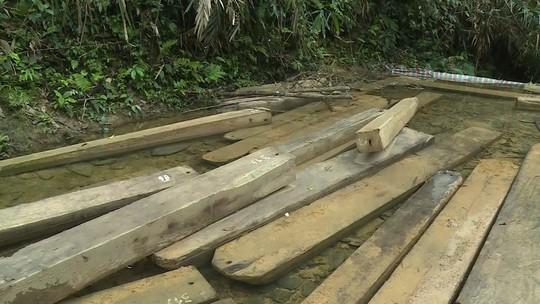 Phát hiện vụ xẻ thịt rừng phòng hộ lớn nhất tỉnh Quảng Bình - Ảnh 2.