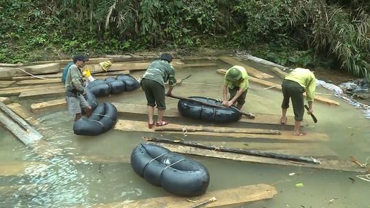 Phát hiện vụ xẻ thịt rừng phòng hộ lớn nhất tỉnh Quảng Bình - Ảnh 8.