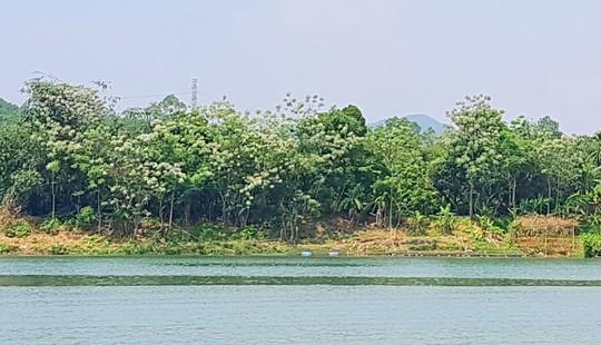 Ngắm cảnh đẹp miên man dòng sông Hương từ thuyền rồng - Ảnh 6.