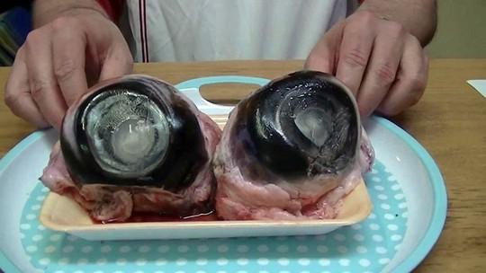 Hú hồn mắt cá ngừ đại dương: Không can đảm đố dám ăn - Ảnh 3.