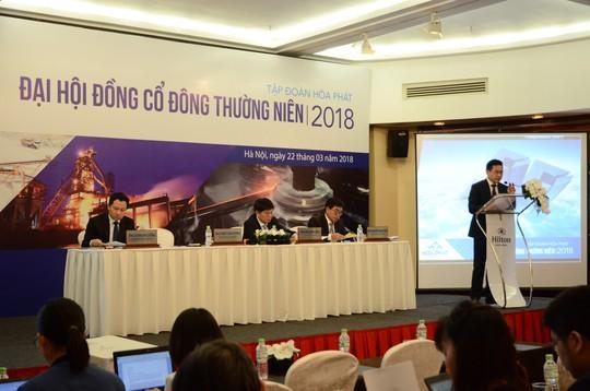 Hòa Phát đặt mục tiêu doanh thu 55.000 tỉ đồng cho năm 2018 - Ảnh 1.