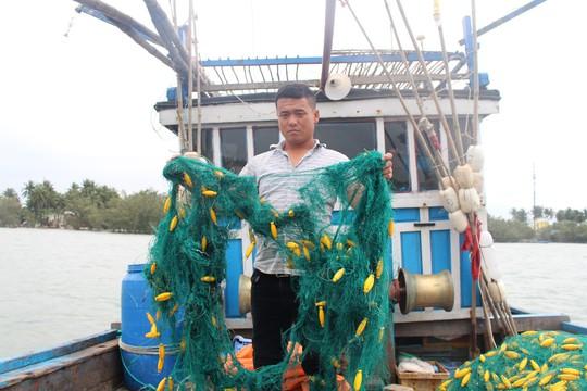 Ngư dân Quảng Nam báo bị tàu lạ dùng súng uy hiếp, phá ngư cụ - Ảnh 2.