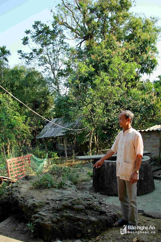 Điều thú vị về cây lội sống qua hơn 10 đời người ở đất Mường Quàng - Ảnh 7.