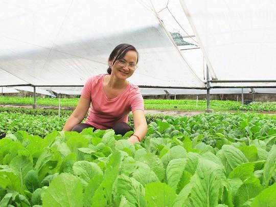 Vườn rau hữu cơ 'sáu không' của nữ thạc sĩ - Ảnh 1.