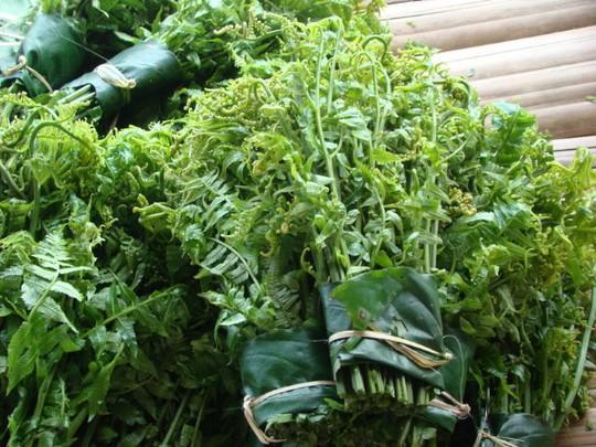 Mê mẩn những loại rau ngon, độc, lạ ở Hà Giang - Ảnh 1.