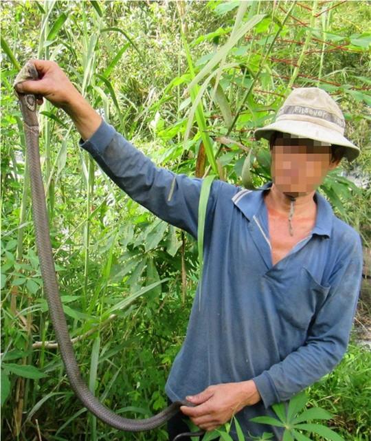 Gai người theo chân cao thủ săn rắn nổi tiếng miền Tây - Ảnh 4.