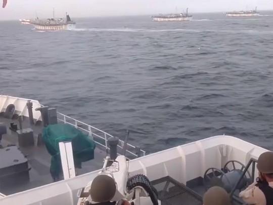 """Argentia """"truy bắt quốc tế"""" tàu cá Trung Quốc - Ảnh 1."""