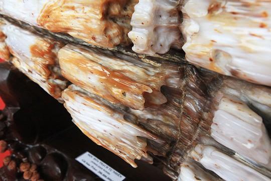 Gỗ hóa thạch kì dị xuất hiện ở Bắc Ninh - Ảnh 5.