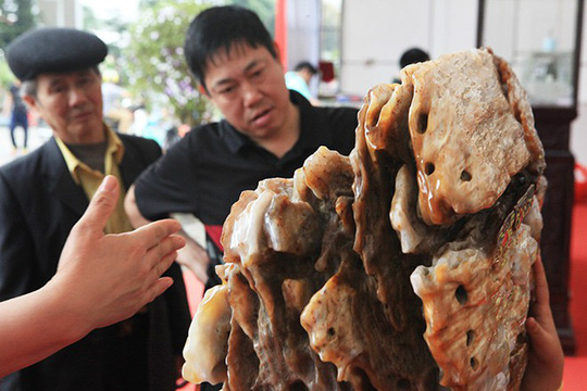 Gỗ hóa thạch kì dị xuất hiện ở Bắc Ninh - Ảnh 3.