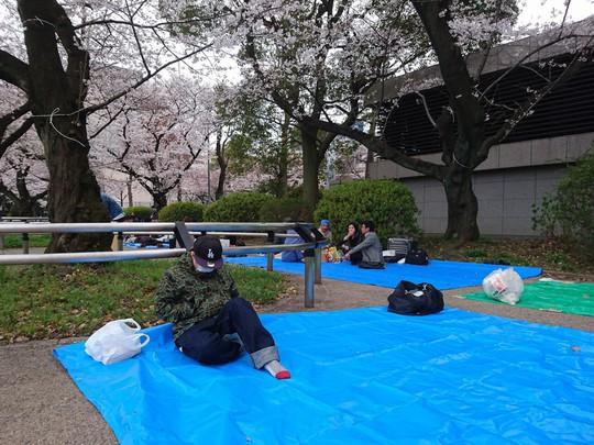 Những nguyên tắc cần biết khi đến Nhật Bản ngắm anh đào - Ảnh 4.