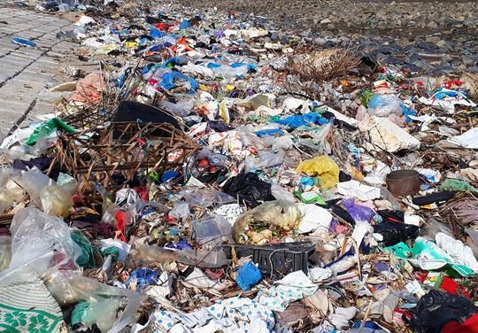 Kinh hoàng cánh rừng rác khổng lồ ven bờ biển ở Thanh Hóa - Ảnh 9.
