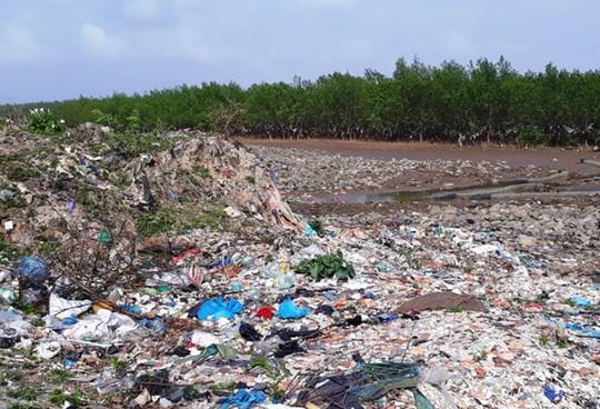 Kinh hoàng cánh rừng rác khổng lồ ven bờ biển ở Thanh Hóa - Ảnh 10.