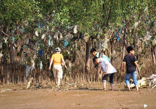 Kinh hoàng cánh rừng rác khổng lồ ven bờ biển ở Thanh Hóa - Ảnh 6.