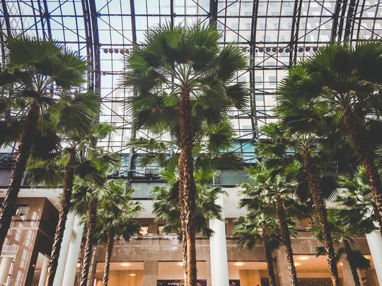 Khám phá trung tâm mua sắm xa xỉ bậc nhất New York - Ảnh 10.