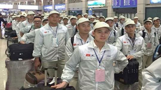 232 ứng viên tham gia thi tuyển chương trình IM Japan - Ảnh 2.