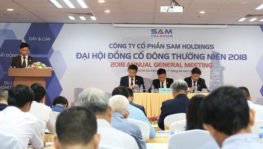 SAM Holdings lợi nhuận 4 lần sau 1 năm tái cấu trúc - Ảnh 1.