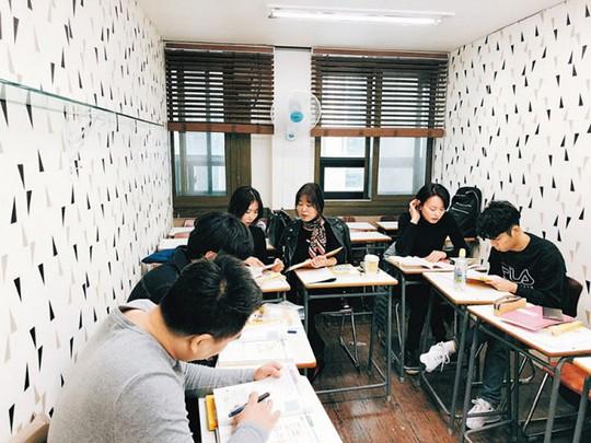 Cơn sốt học tiếng Việt tại Hàn Quốc - Ảnh 1.