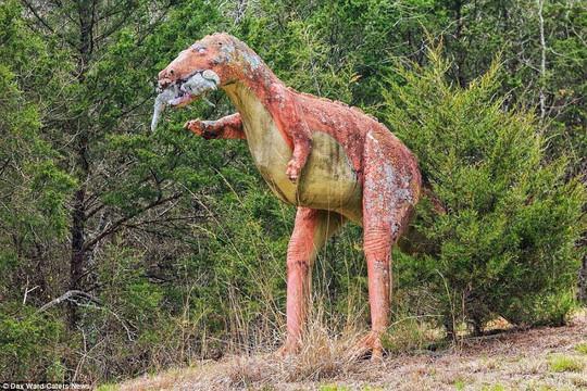Ám ảnh công viên khủng long bị bỏ hoang - Ảnh 2.