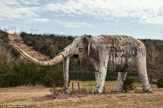 Ám ảnh công viên khủng long bị bỏ hoang - Ảnh 10.
