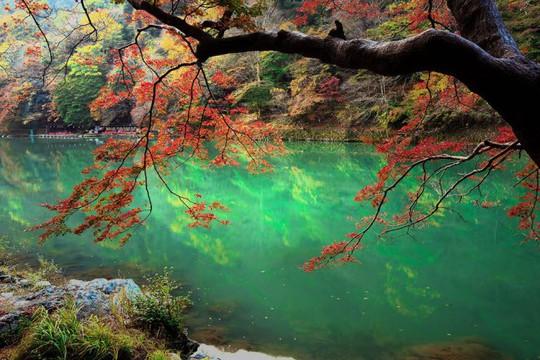 Vịnh Hạ Long, Mù Cang Chải là những địa điểm có cảnh đẹp nhất Trái đất - Ảnh 16.