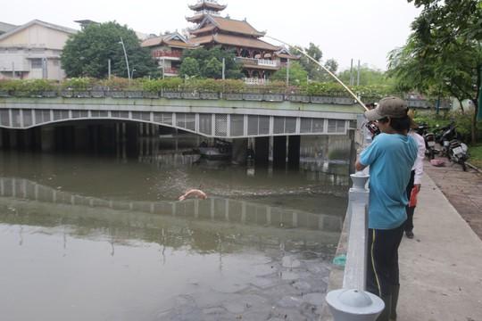 Kênh Nhiêu Lộc - Thị Nghè lại thành dòng kênh chết - Ảnh 1.