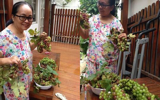 Tăng Thanh Hà khoe khu vườn bình yên trĩu quả - Ảnh 6.