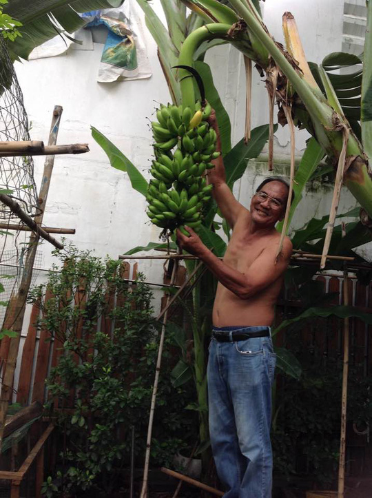 Tăng Thanh Hà khoe khu vườn bình yên trĩu quả - Ảnh 2.